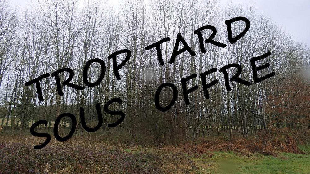 Terrains, Forêts à Plouray